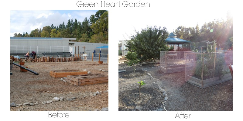 GreenHeart-beforeafter